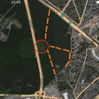 Планируемые дороги в Кузьминском лесу